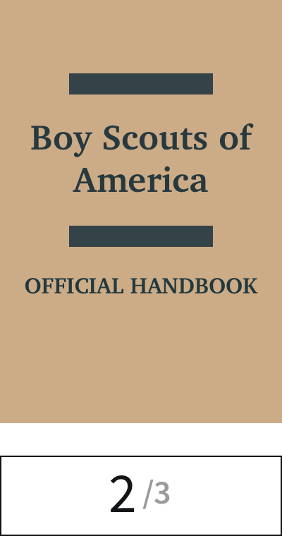 22 scouts